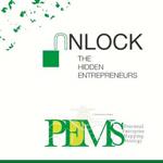 PEMS-Report